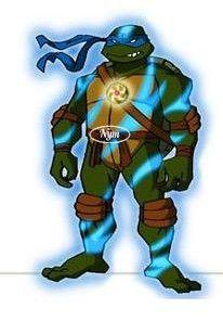Image tortue ninja - Tortue ninja 2003 ...